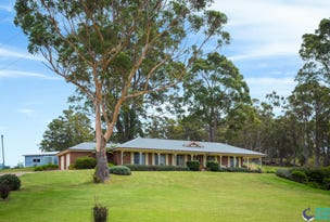 50 Rainforest Parkway, Narooma, NSW 2546