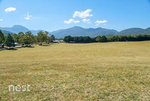 Lot 1, 365 Mountain River Road, Mountain River, Tas 7109