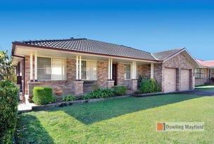 55 Coachwood Drive, Warabrook, NSW 2304