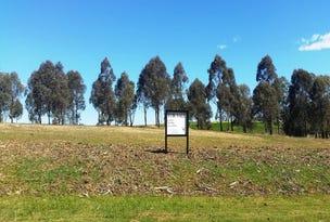 Lot E21, 43 Paperbark Drive, Pokolbin, NSW 2320