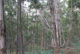 330 Wildwoods Rd, Wyndham, NSW 2550