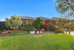 7 Boronia Way, Elliminyt, Vic 3250