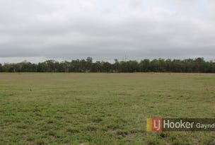 Lot 37 Hetheringtons Road, Dallarnil, Qld 4621