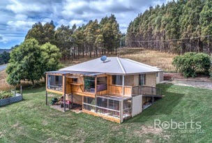 364 Mathinna Plains Road, Ringarooma, Tas 7263
