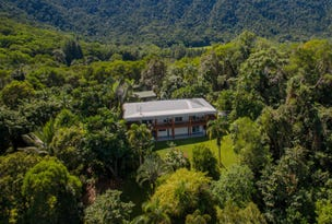 122 Forest Creek Road, Daintree, Qld 4873