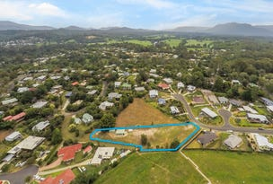 7 Red Gum Crescent, Bellingen, NSW 2454