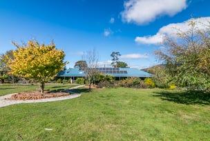 123 Vinces Saddle Road, Lower Longley, Tas 7109