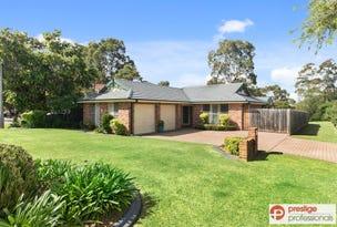 31 Colo Court, Wattle Grove, NSW 2173