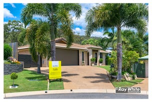 16 Cycad Court, Norman Gardens, Qld 4701