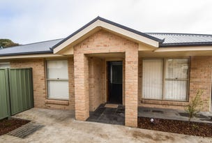 Unit 3/1 Patterson Ave, Young, NSW 2594