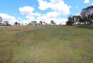 2097 Mitchell Highway, Vittoria, NSW 2799
