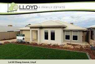 60 Chang Avenue, Lloyd, NSW 2650