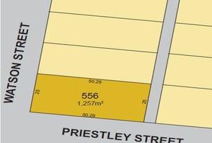 Lot 556, 2 Watson Street, Mount Magnet, WA 6638