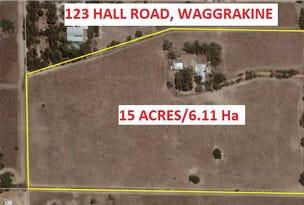 123 Hall Road, Waggrakine, WA 6530