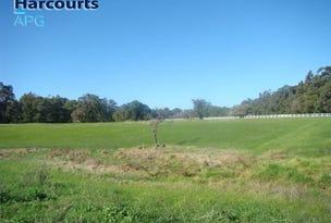 Lot 100 South Western Highway, North Boyanup, WA 6237