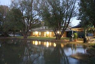 507 Piggins Road, Hopefield, NSW 2646
