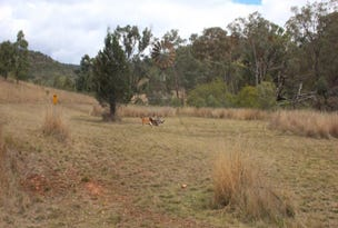 Lot 74 Mole River Road, Tenterfield, NSW 2372