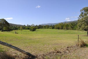 Lot 3, 3 Beaudesert-Nerang Road, Canungra, Qld 4275