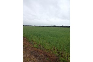 Farm 1045 Pine Drive, Coleambally, NSW 2707