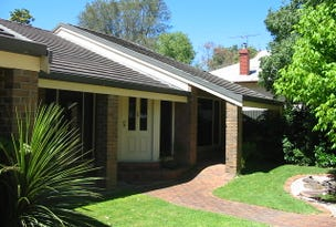 91 Mawson Road, Meadows, SA 5201