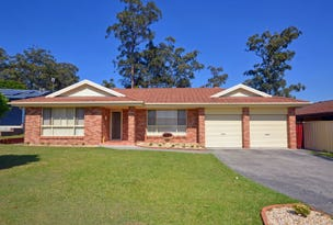 7 Banksia Close, Lakewood, NSW 2443