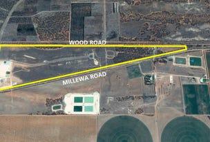 974 Millewa Road, Koorlong, Vic 3501