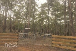 Lot 2 Mulcahys Road, Apollo Bay, Tas 7150