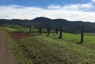 90 Everinghams Road, Dorrigo, NSW 2453