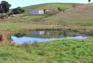 860 Castra Road, Spalford, Tas 7315