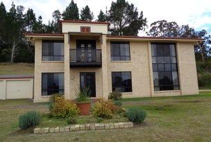 103 Leechs Gully Rd, Tenterfield, NSW 2372