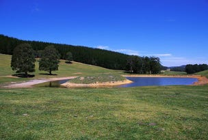 320 Kanangra Walls Road, Oberon, NSW 2787