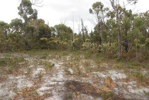 LOT 14 Tasman Highway, Scamander, Tas 7215
