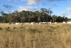 1270 ACRES GRAZING BLOCK, Jandowae, Qld 4410