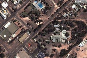 12 RICHARDS AVE, Wudinna, SA 5652