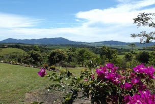 Lot 4 Hernon Road, Innisfail, Qld 4860