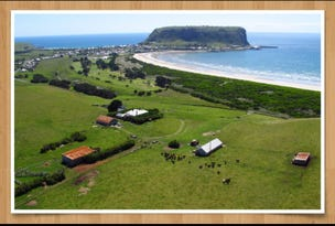 471 Main Road, Stanley, Tas 7331
