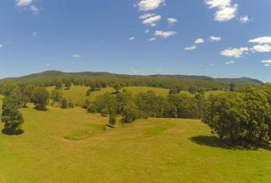 356 Squires Road, Wootton, NSW 2423