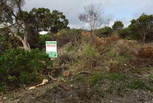 Lot 27, Collins Crescent, Baudin Beach, SA 5222