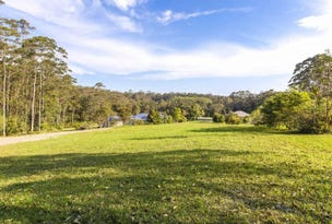 40 Meadowood Rise, Mapleton, Qld 4560
