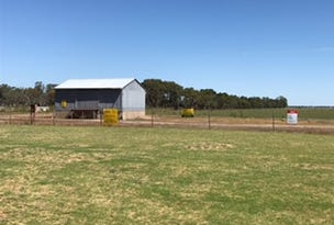 ALLOTMENT 280 MUSGRAVE AVENUE, Lucindale, SA 5272
