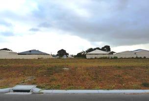 Lot 227 Thistle Avenue, Bandy Creek, WA 6450