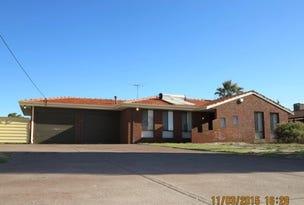 28 Hibbertia Crescent, Riverton, WA 6148