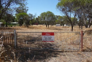 Lot 121 Scott Street, Mount Hardey, WA 6302