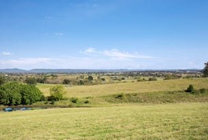 Lot 212 Esk Circuit, Maitland Vale, NSW 2320