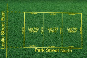 28 Leslie Street East (Corner Park Street North), Woodville Park, SA 5011