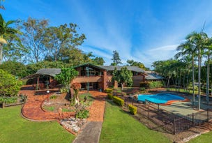 99 Forrest Street, Nudgee, Qld 4014