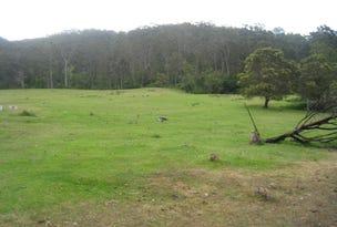"""- """"Bellbird Springs"""" Tantawangalo Lane, Tantawangalo, NSW 2550"""