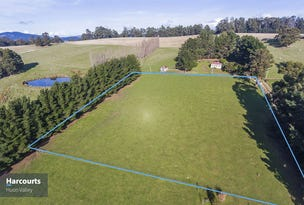 Lot 2 Walkers Road, Franklin, Tas 7113