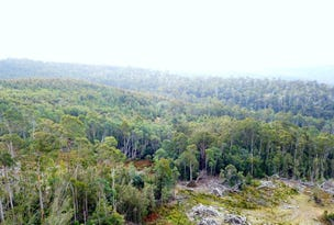 0 Blairs Road, Mole Creek, Tas 7304