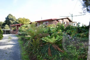 145 Taylors Road, Mount Hicks, Tas 7325